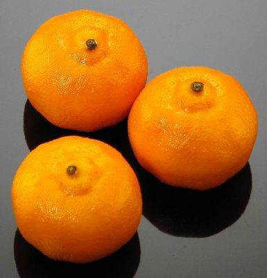 Tangerines (Honey Bell)