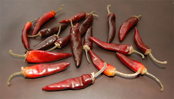 Chili Peppers (Small)