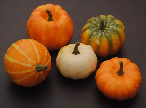 Pumpkin & Squash Assortment #3